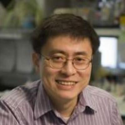 Xinzhong Dong